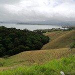 NZ Coromandel